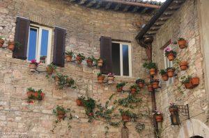 181025114232_Assisi