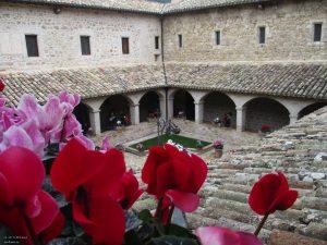 181026111756_Assisi