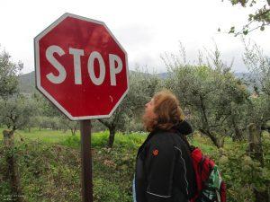 181026141419_Assisi