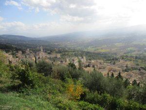 181027145325_Assisi
